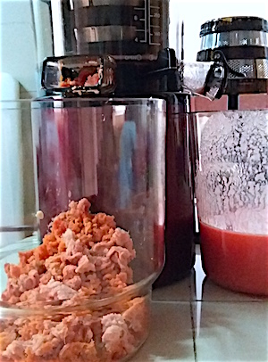 Hurom Slow Juicer Carrots : Review Slow Juicer Hurom HY EBE11 Cakefever.com